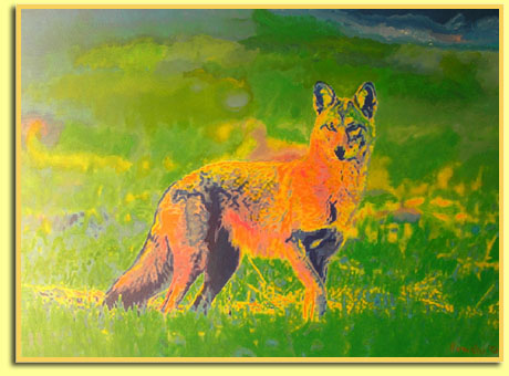 Coyote - Original Painting by Keith Howchi Kilburn