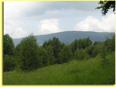 Looking West from Basecamp, Carpathian Mountains, Ukraine